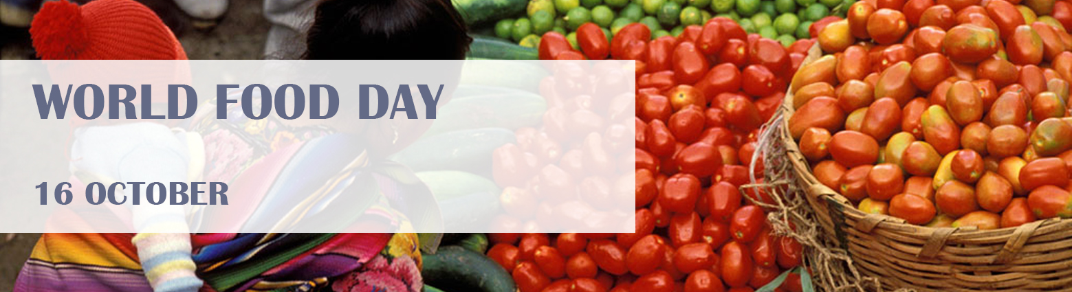 web banner food day